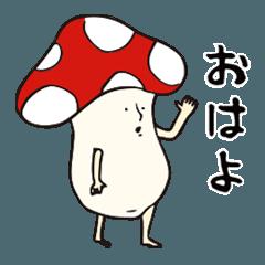 [LINEスタンプ] きのぴ キモカワきのこ