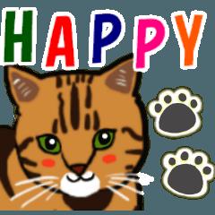 [LINEスタンプ] 茶色のトラ猫スタンプ