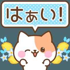 [LINEスタンプ] うごく♡ネコのかわいい夏スタンプ