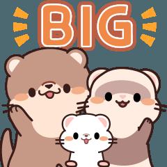 [LINEスタンプ] 毎日使える♪可愛いカワウソの日常 (BIG)