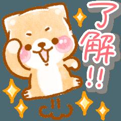 [LINEスタンプ] 【台湾ver】ゆるい❤️いやしばいぬ❤️
