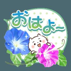 [LINEスタンプ] ほんわかさん【夏・毎日使いやすい】25