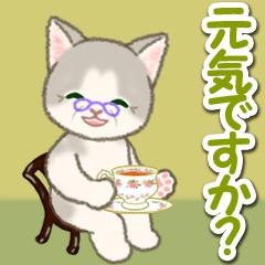 [LINEスタンプ] 優しいおばあちゃん猫ちゃん