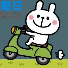 [LINEスタンプ] 〇動く!うさぎさんの毎日スタンプ〇