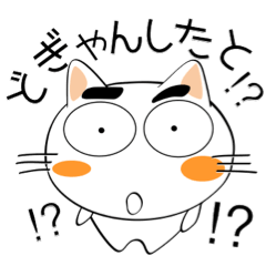 [LINEスタンプ] 九州のことば★しろネコ