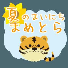 [LINEスタンプ] まめとら夏のまいにち
