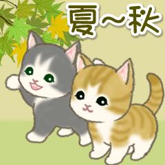 [LINEスタンプ] 夏~秋 もこもこ猫ちゃんズ