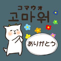 [LINEスタンプ] 日常会話で使える韓国語①