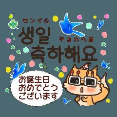 [LINEスタンプ] 日常会話で使える韓国語②