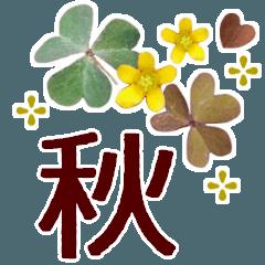 [LINEスタンプ] 草花で秋によく使う*やさしいあいさつ言葉