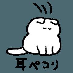 [LINEスタンプ] 日常生活で使いやすい白猫スタンプ