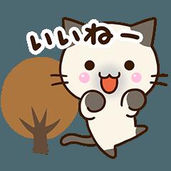 [LINEスタンプ] おちゃめなシャム猫【秋】